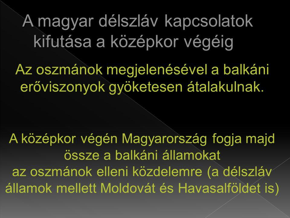 A magyar délszláv kapcsolatok kifutása a középkor végéig