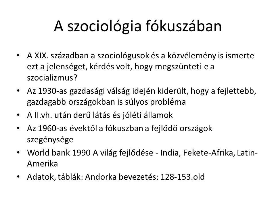 A szociológia fókuszában