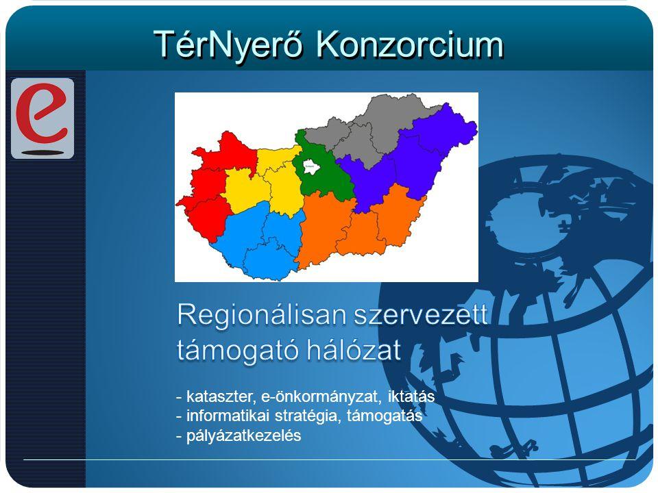 TérNyerő Konzorcium Regionálisan szervezett támogató hálózat