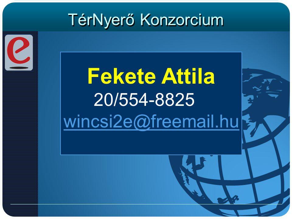 TérNyerő Konzorcium Fekete Attila 20/554-8825 wincsi2e@freemail.hu