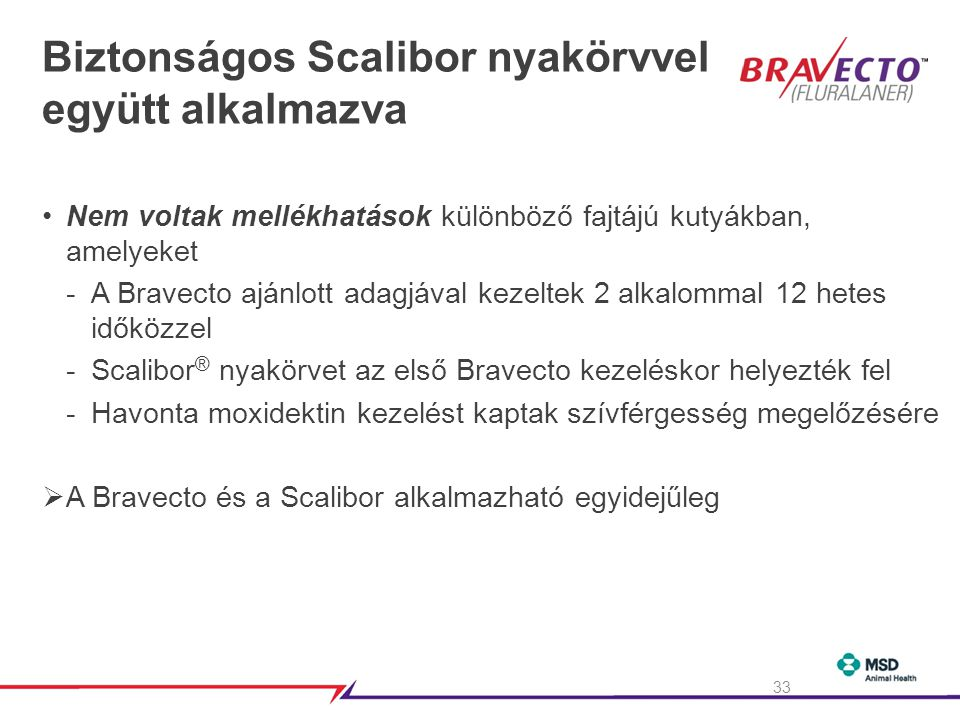 Biztonságos Scalibor nyakörvvel együtt alkalmazva