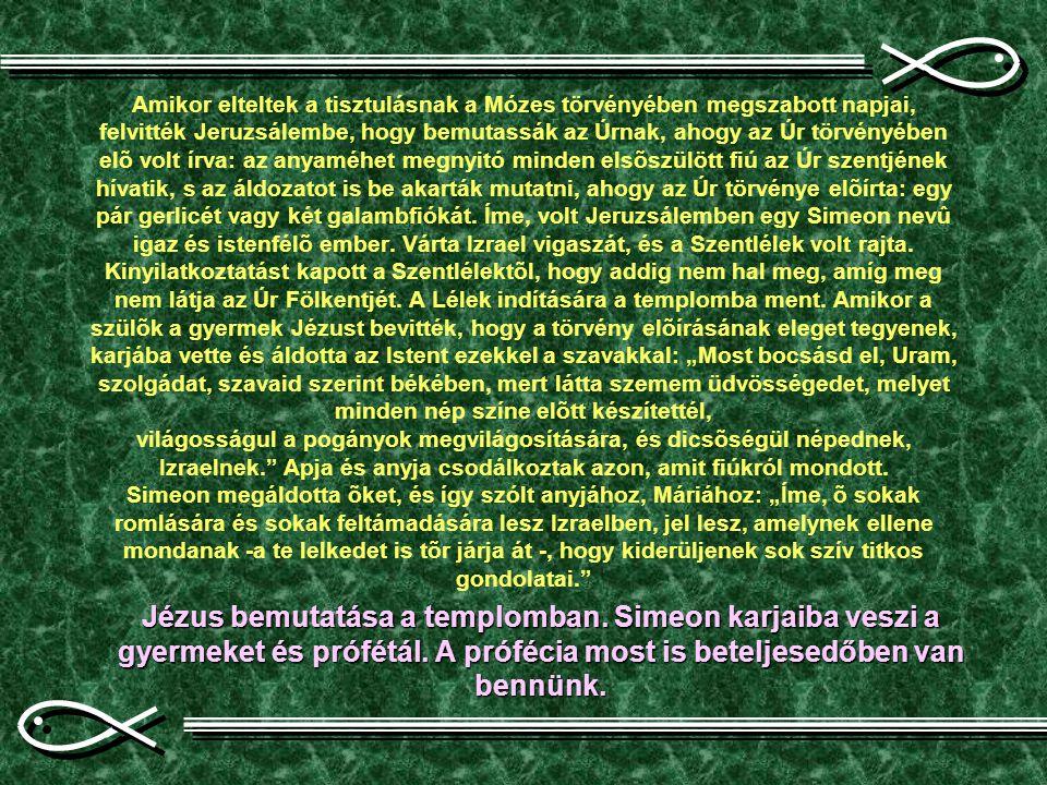 """Amikor elteltek a tisztulásnak a Mózes törvényében megszabott napjai, felvitték Jeruzsálembe, hogy bemutassák az Úrnak, ahogy az Úr törvényében elõ volt írva: az anyaméhet megnyitó minden elsõszülött fiú az Úr szentjének hívatik, s az áldozatot is be akarták mutatni, ahogy az Úr törvénye elõírta: egy pár gerlicét vagy két galambfiókát. Íme, volt Jeruzsálemben egy Simeon nevû igaz és istenfélõ ember. Várta Izrael vigaszát, és a Szentlélek volt rajta. Kinyilatkoztatást kapott a Szentlélektõl, hogy addig nem hal meg, amíg meg nem látja az Úr Fölkentjét. A Lélek indítására a templomba ment. Amikor a szülõk a gyermek Jézust bevitték, hogy a törvény elõírásának eleget tegyenek, karjába vette és áldotta az Istent ezekkel a szavakkal: """"Most bocsásd el, Uram, szolgádat, szavaid szerint békében, mert látta szemem üdvösségedet, melyet minden nép színe elõtt készítettél, világosságul a pogányok megvilágosítására, és dicsõségül népednek, Izraelnek. Apja és anyja csodálkoztak azon, amit fiúkról mondott. Simeon megáldotta õket, és így szólt anyjához, Máriához: """"Íme, õ sokak romlására és sokak feltámadására lesz Izraelben, jel lesz, amelynek ellene mondanak -a te lelkedet is tõr járja át -, hogy kiderüljenek sok szív titkos gondolatai."""