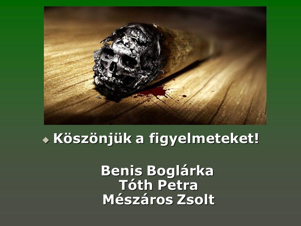 Köszönjük a figyelmeteket! Benis Boglárka Tóth Petra Mészáros Zsolt