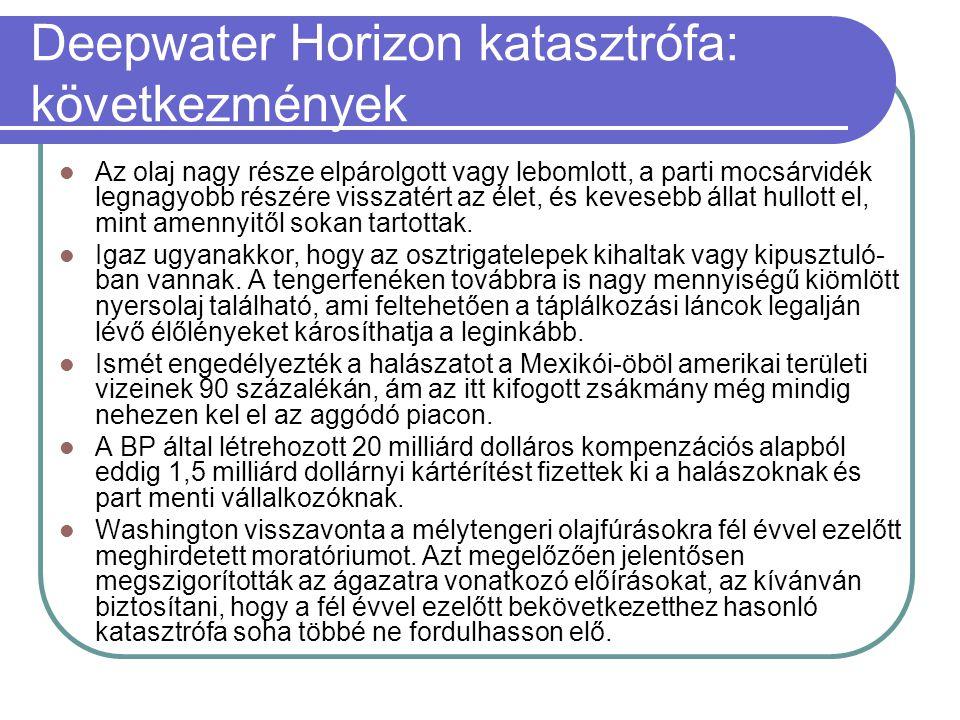 Deepwater Horizon katasztrófa: következmények