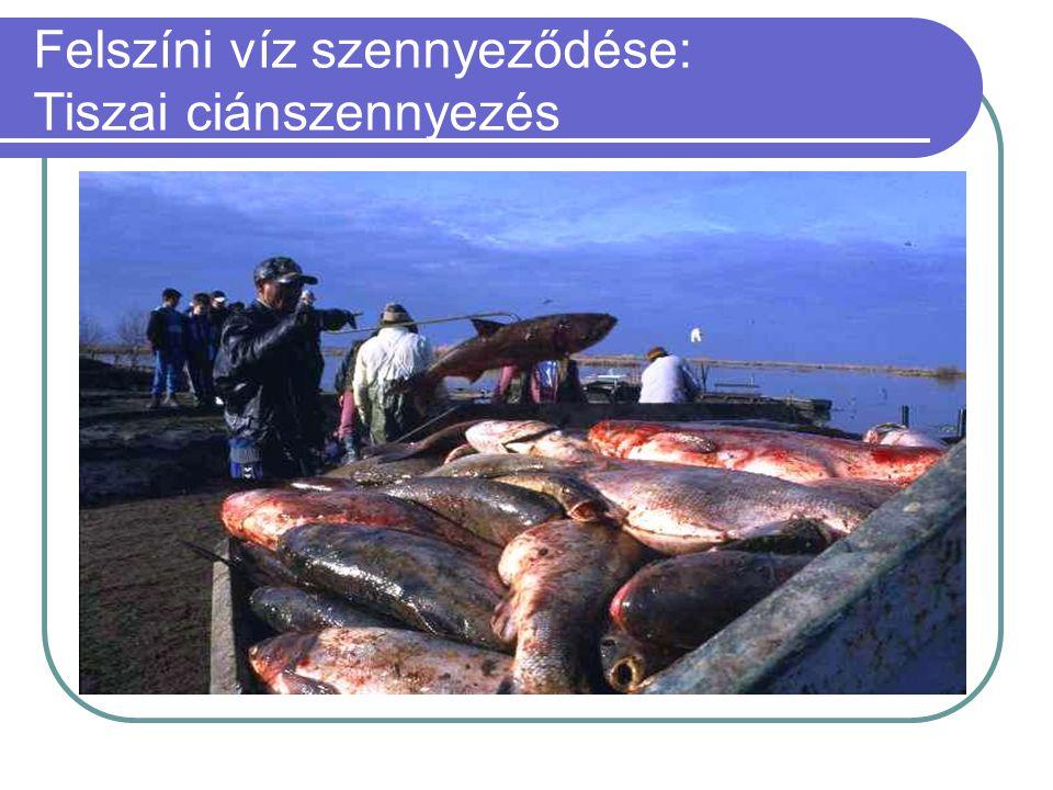 Felszíni víz szennyeződése: Tiszai ciánszennyezés