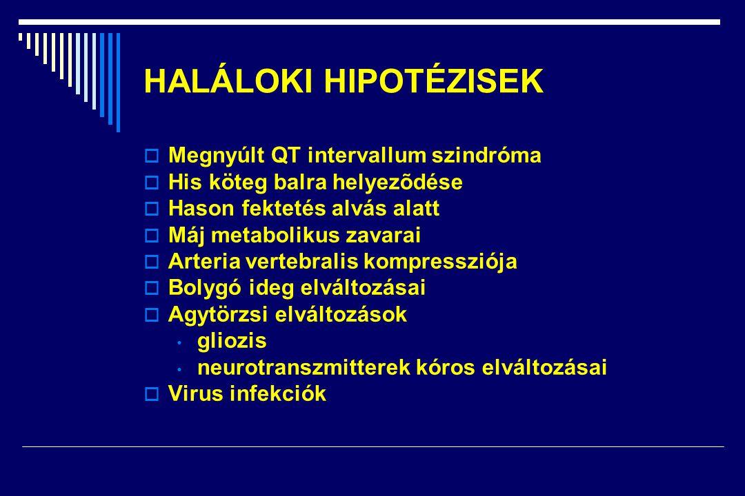 HALÁLOKI HIPOTÉZISEK Megnyúlt QT intervallum szindróma