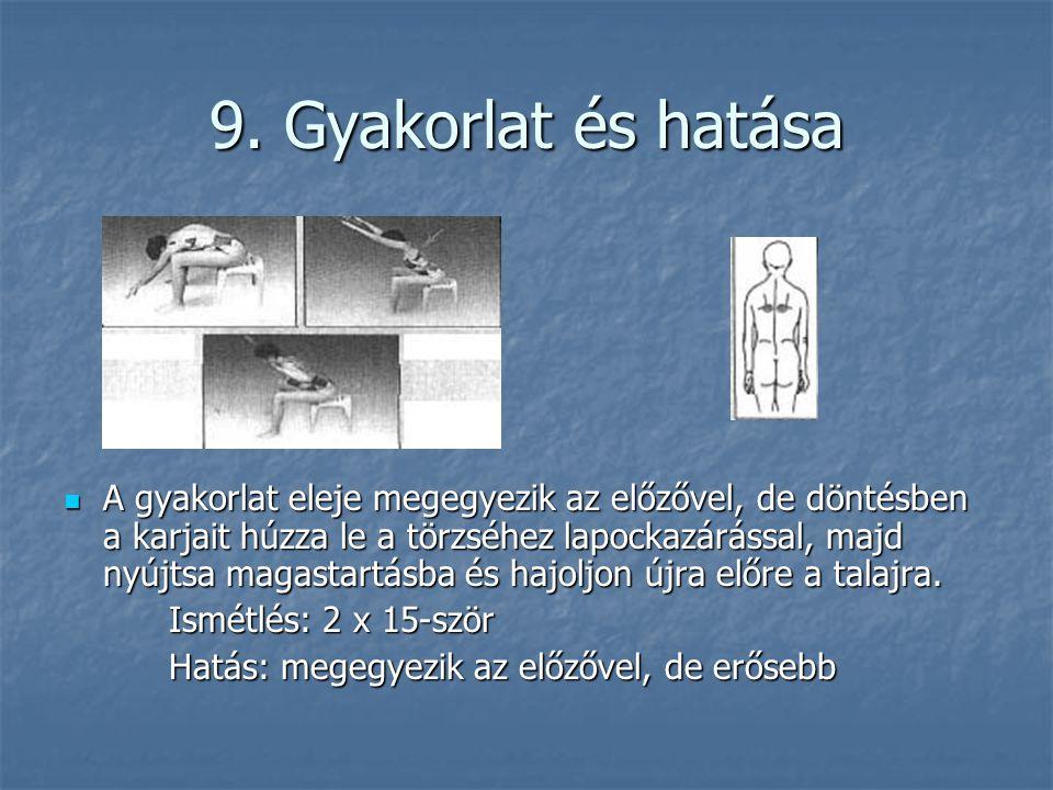 9. Gyakorlat és hatása