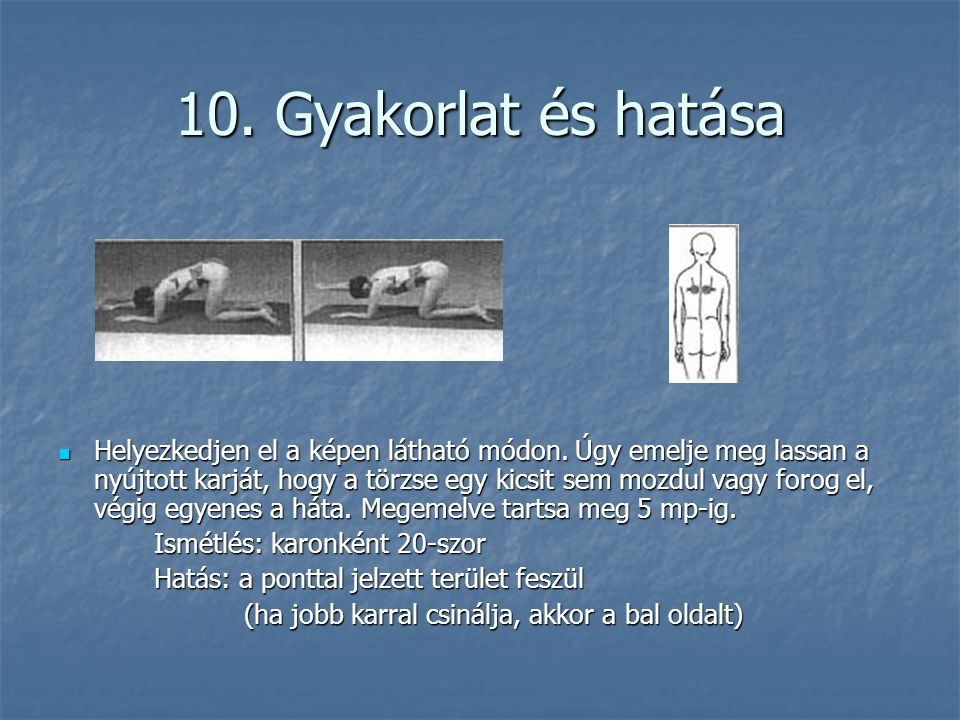 10. Gyakorlat és hatása
