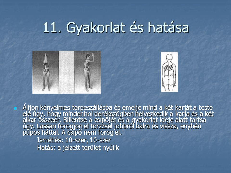 11. Gyakorlat és hatása