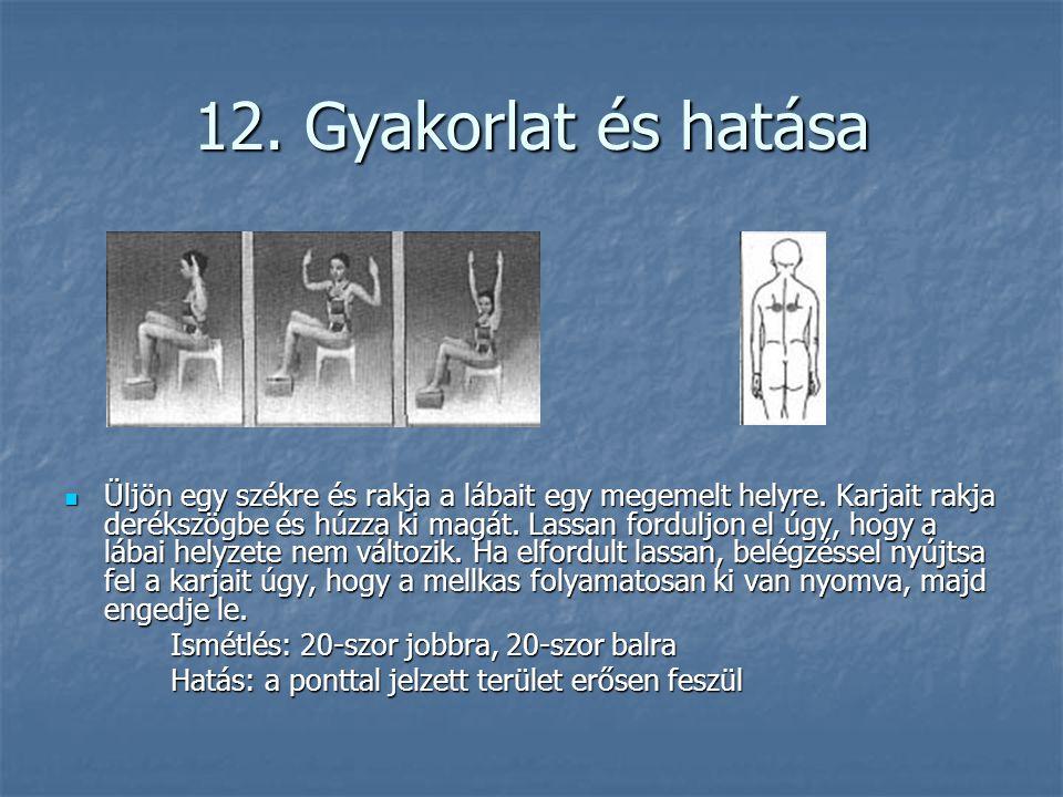 12. Gyakorlat és hatása