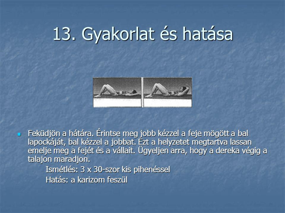 13. Gyakorlat és hatása