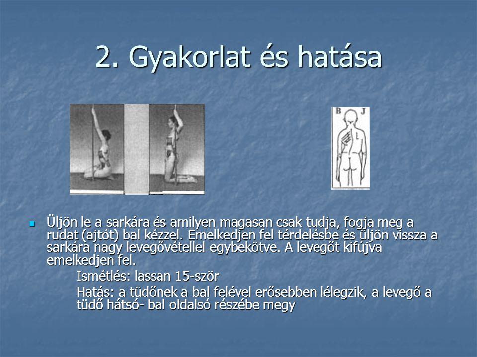 2. Gyakorlat és hatása