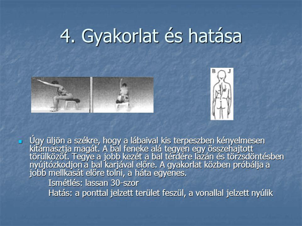 4. Gyakorlat és hatása