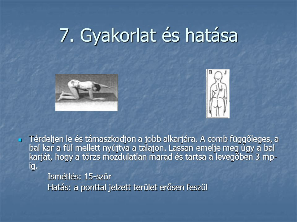 7. Gyakorlat és hatása