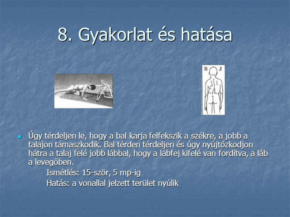 8. Gyakorlat és hatása