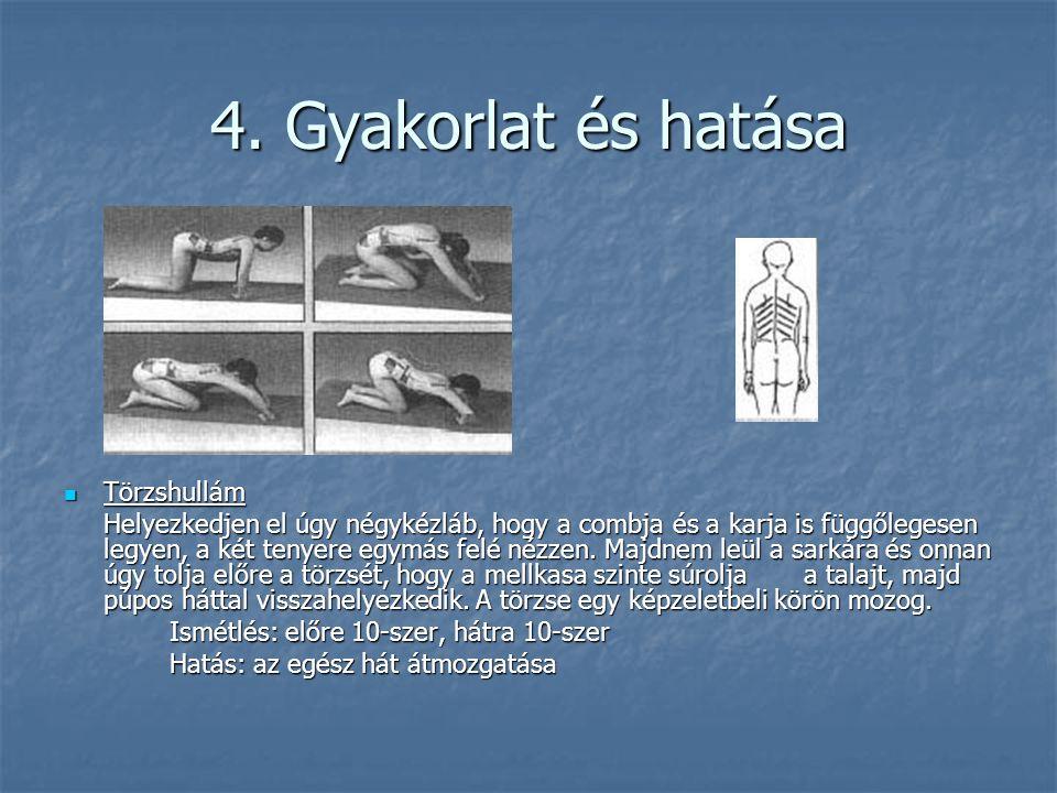 4. Gyakorlat és hatása Törzshullám
