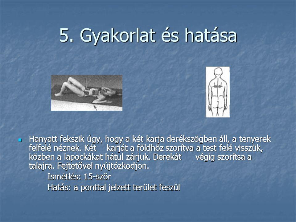 5. Gyakorlat és hatása