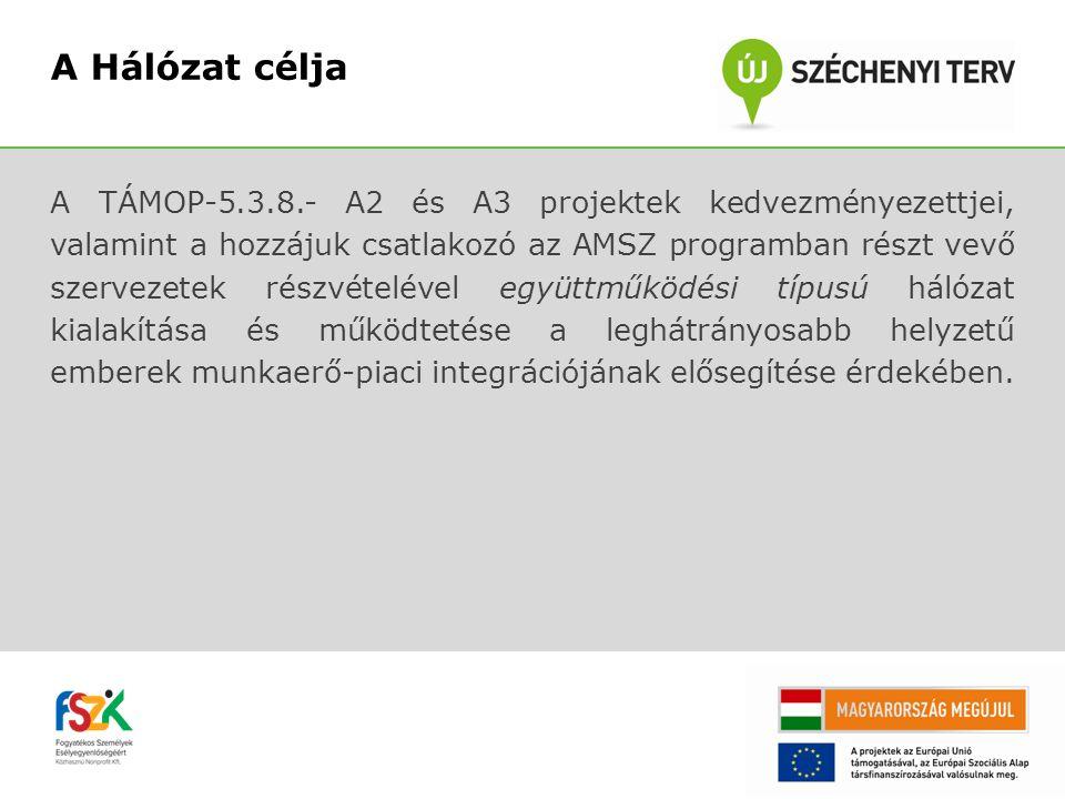 2 A Hálózat célja.
