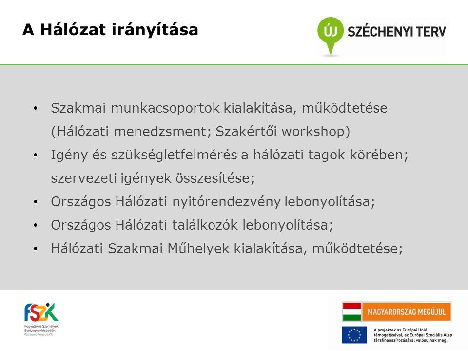 7 A Hálózat irányítása. Szakmai munkacsoportok kialakítása, működtetése (Hálózati menedzsment; Szakértői workshop)