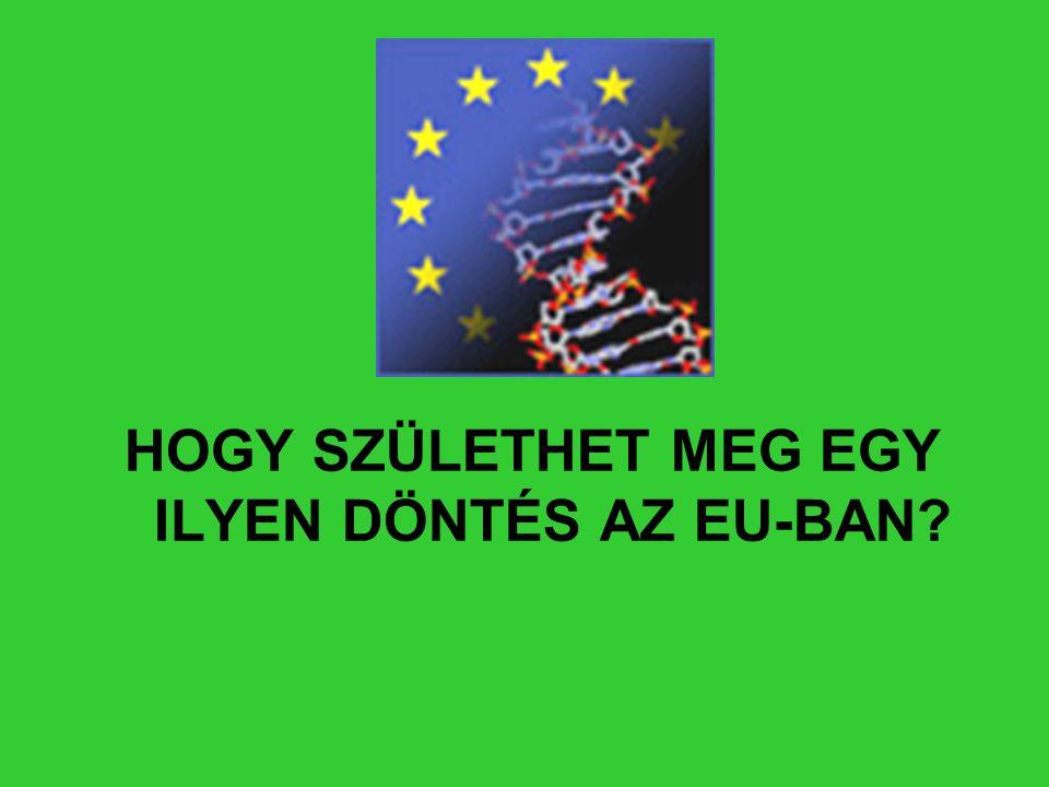 HOGY SZÜLETHET MEG EGY ILYEN DÖNTÉS AZ EU-BAN