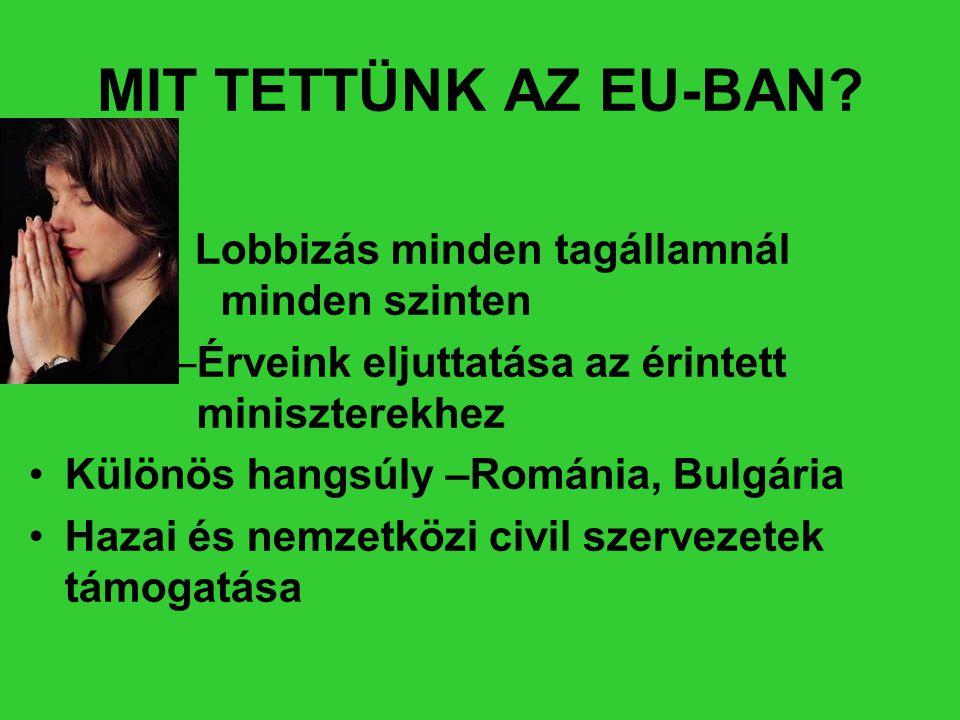 MIT TETTÜNK AZ EU-BAN Lobbizás minden tagállamnál minden szinten