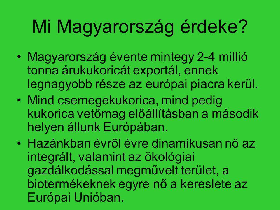 Mi Magyarország érdeke