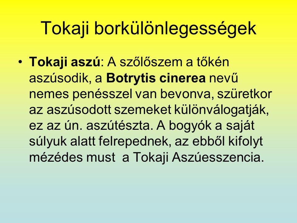 Tokaji borkülönlegességek