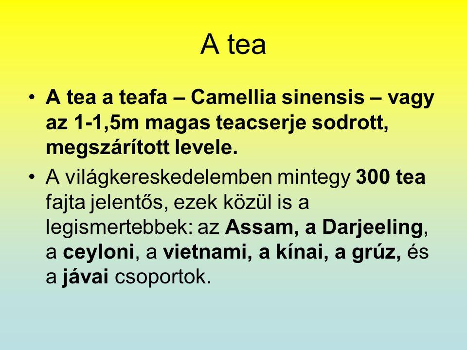 A tea A tea a teafa – Camellia sinensis – vagy az 1-1,5m magas teacserje sodrott, megszárított levele.