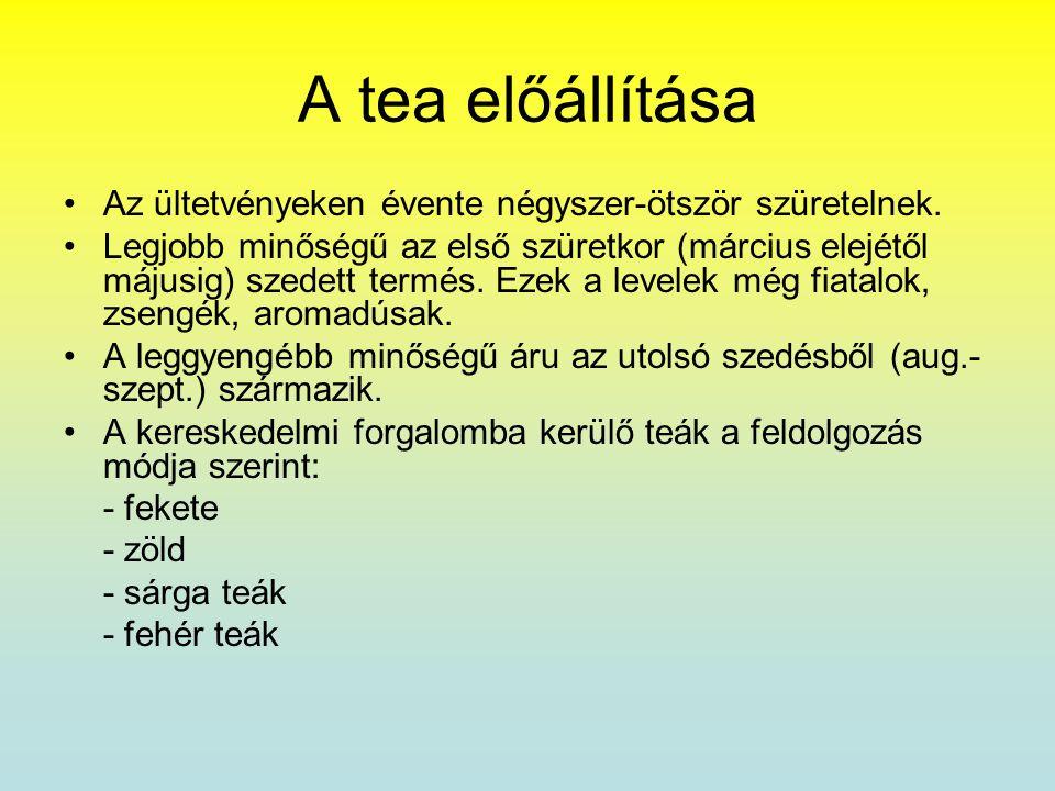 A tea előállítása Az ültetvényeken évente négyszer-ötször szüretelnek.