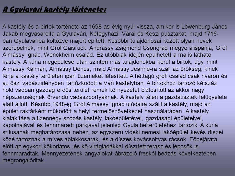 A Gyulavári kastély története: