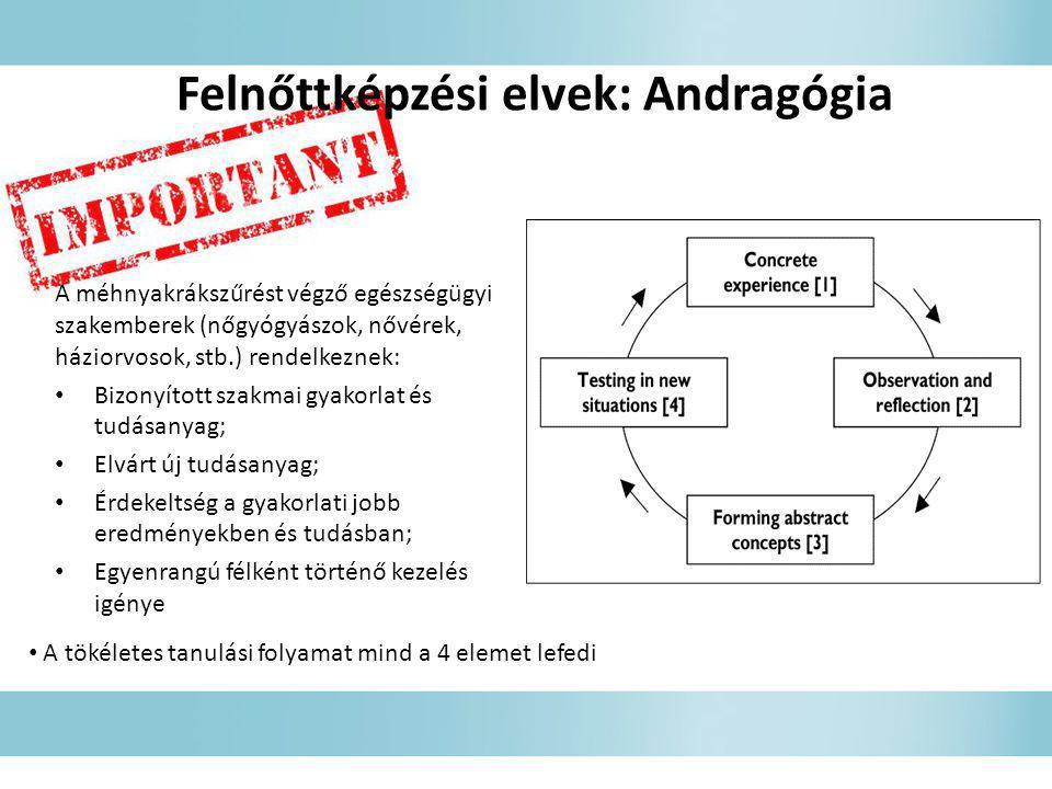 Felnőttképzési elvek: Andragógia
