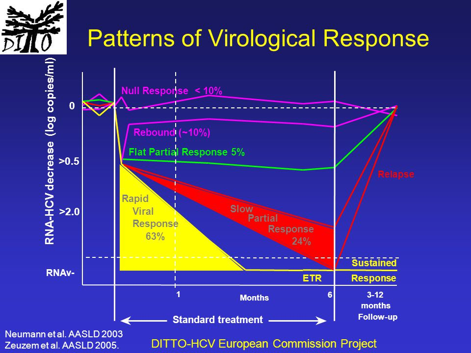 Patterns of Virological Response