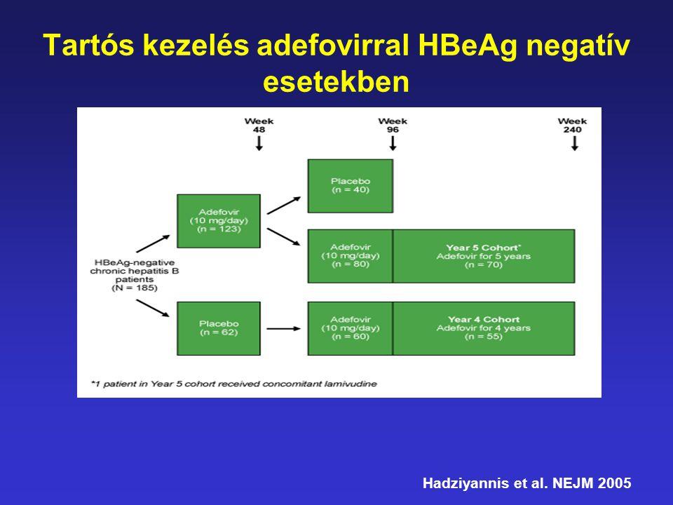 Tartós kezelés adefovirral HBeAg negatív esetekben