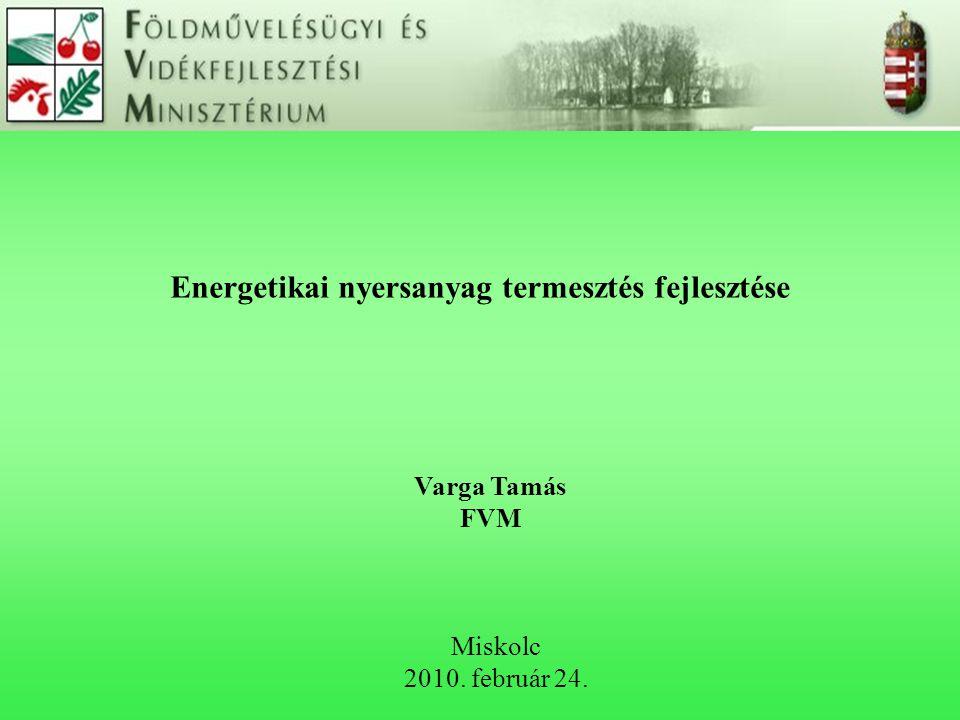 Energetikai nyersanyag termesztés fejlesztése