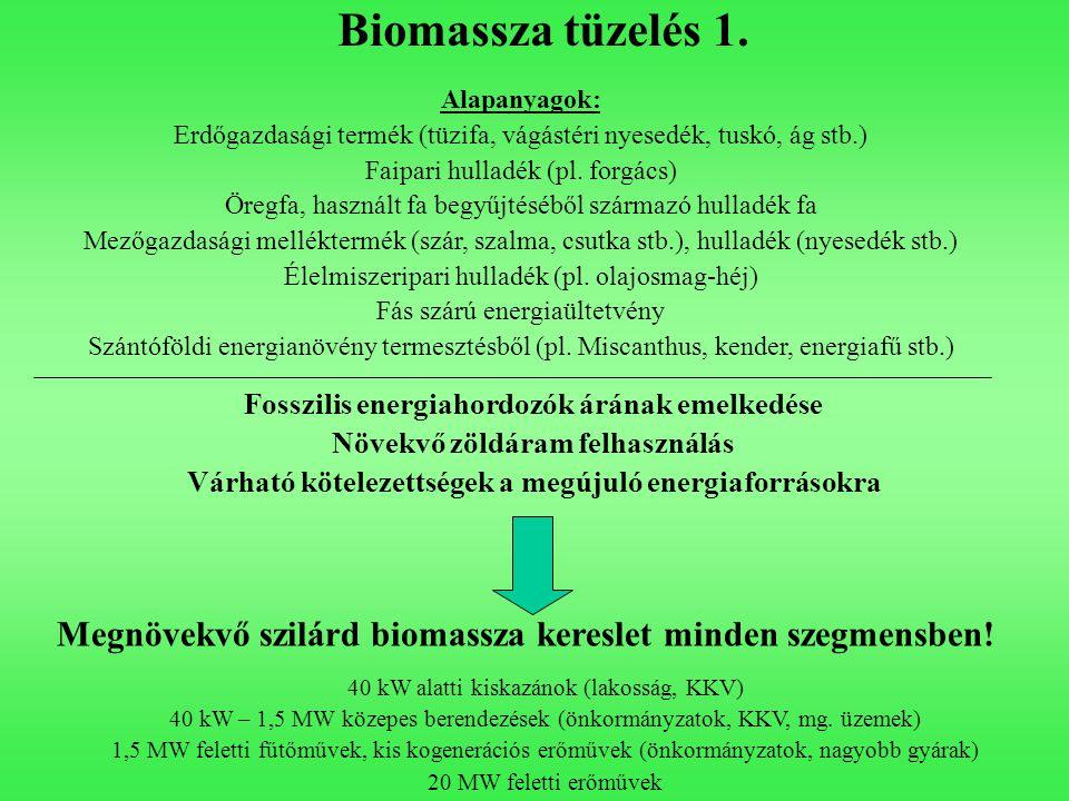 Biomassza tüzelés 1. Alapanyagok: Erdőgazdasági termék (tüzifa, vágástéri nyesedék, tuskó, ág stb.)