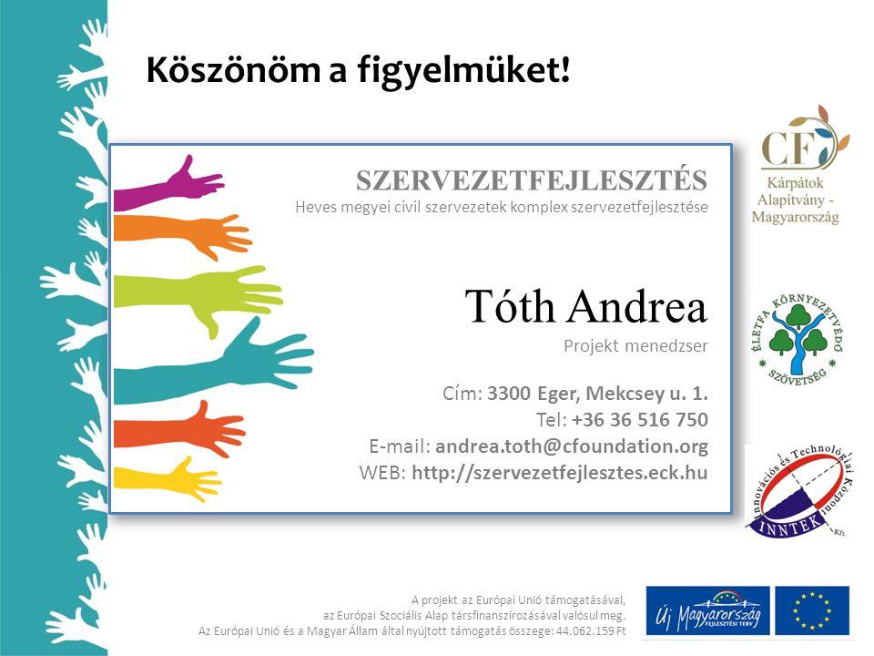 Tóth Andrea Köszönöm a figyelmüket! SZERVEZETFEJLESZTÉS