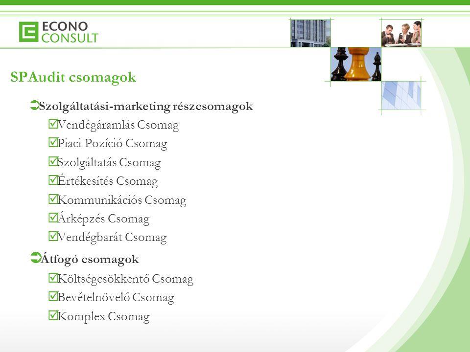 SPAudit csomagok Szolgáltatási-marketing részcsomagok