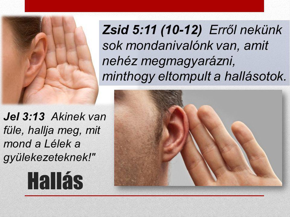 Zsid 5:11 (10-12) Erről nekünk sok mondanivalónk van, amit nehéz megmagyarázni, minthogy eltompult a hallásotok.