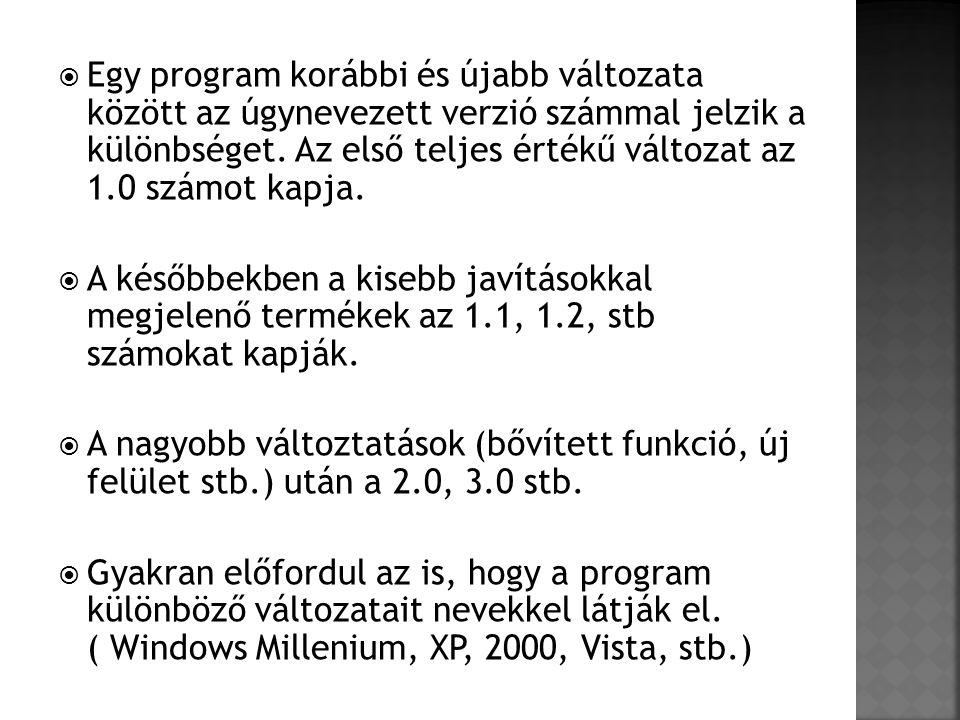 Egy program korábbi és újabb változata között az úgynevezett verzió számmal jelzik a különbséget. Az első teljes értékű változat az 1.0 számot kapja.