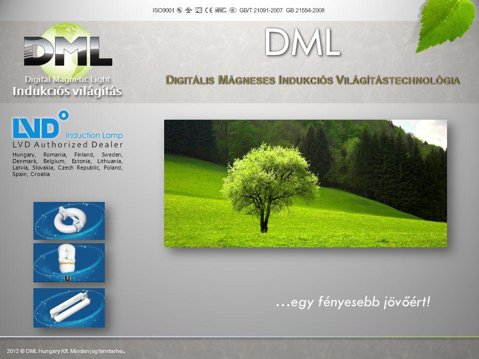 Digitális Mágneses Indukciós Világítástechnológia