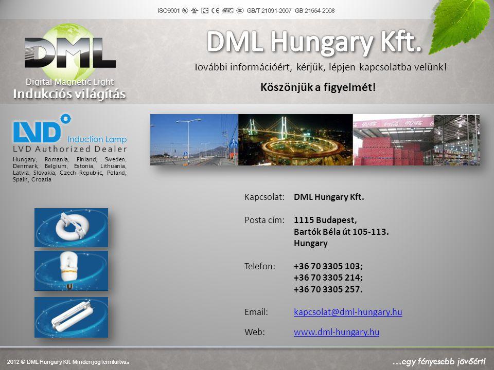 DML Hungary Kft. Indukciós világítás Köszönjük a figyelmét!