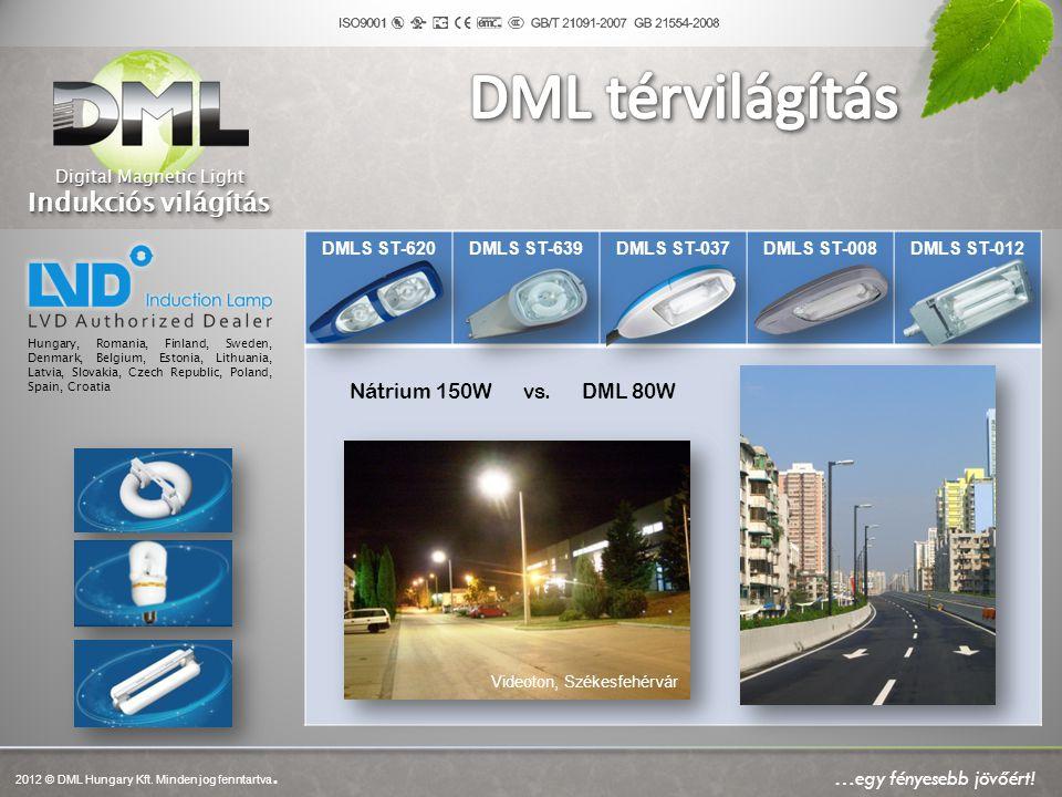 Digital Magnetic Light