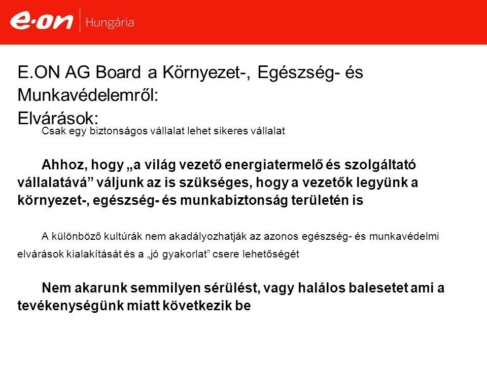 E.ON AG Board a Környezet-, Egészség- és Munkavédelemről: Elvárások: