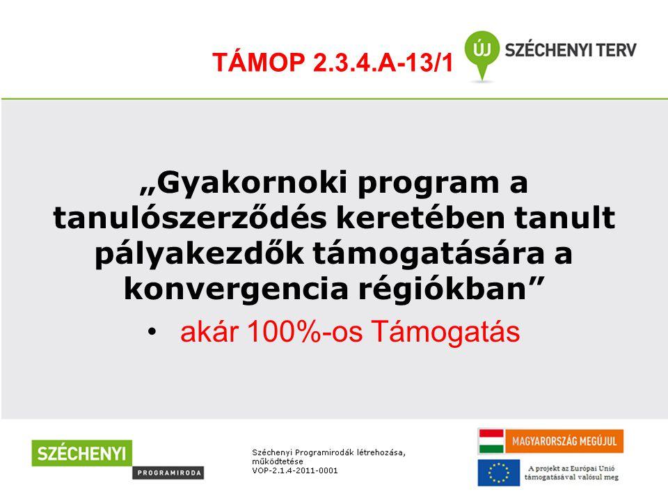 """TÁMOP 2.3.4.A-13/1 """"Gyakornoki program a tanulószerződés keretében tanult pályakezdők támogatására a konvergencia régiókban"""