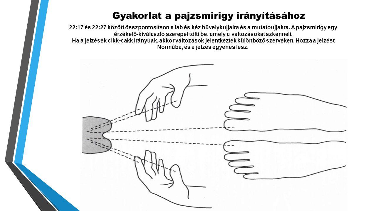 Gyakorlat a pajzsmirigy irányításához