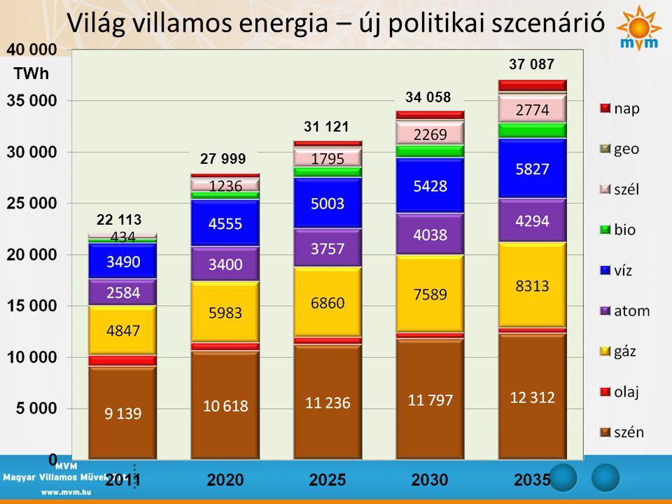 Világ villamos energia – új politikai szcenárió