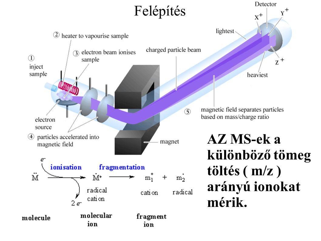 Felépítés AZ MS-ek a különböző tömeg töltés ( m/z ) arányú ionokat mérik.