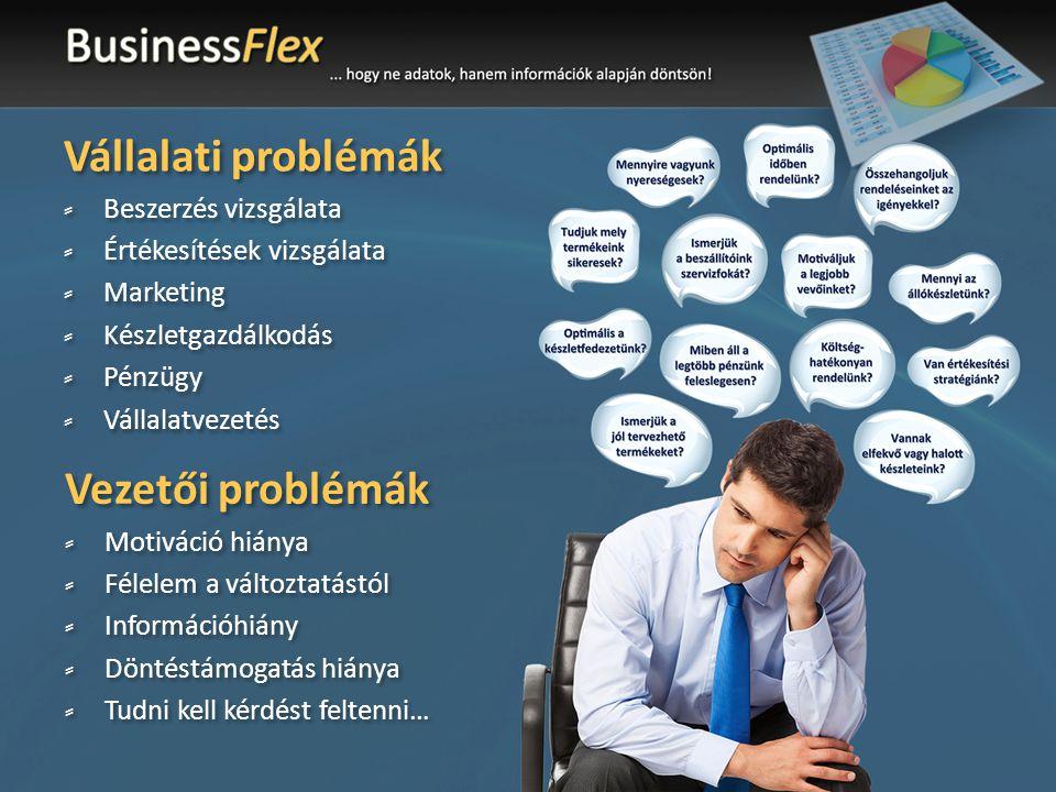 Vállalati problémák Vezetői problémák Beszerzés vizsgálata