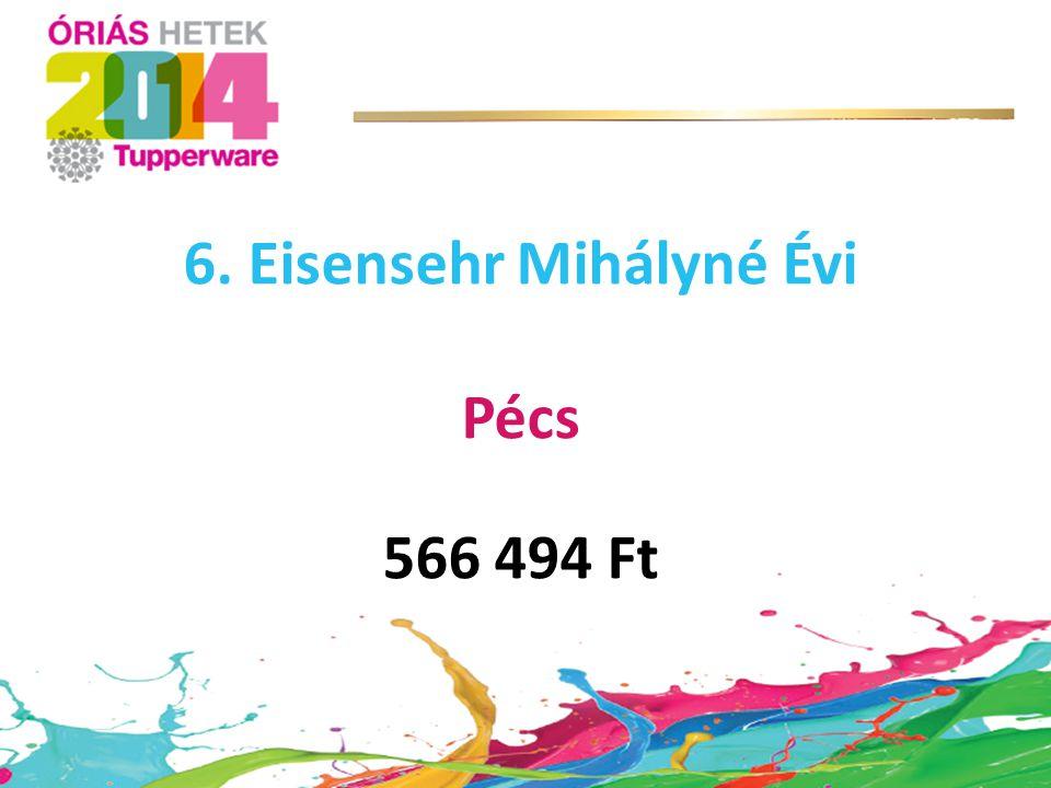 6. Eisensehr Mihályné Évi