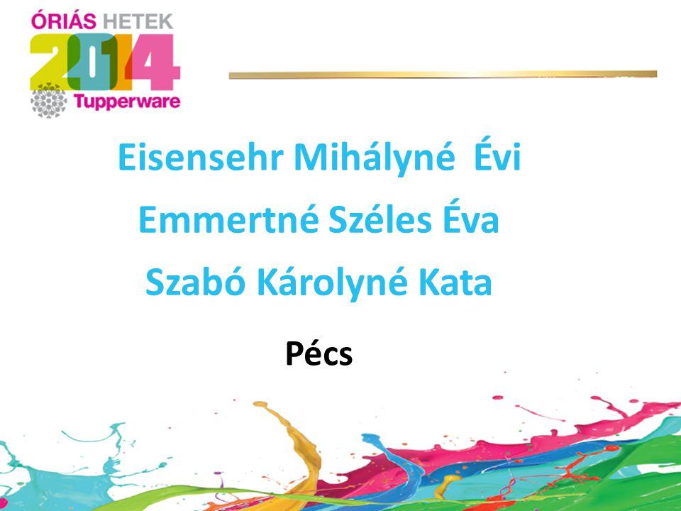 Eisensehr Mihályné Évi